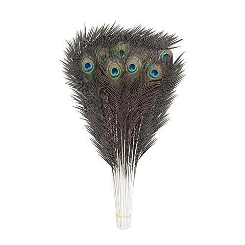 Weddecor - Plumas naturales de cola de pavo real, plumas coloridas para Navidad, bodas, fiestas, decoración artística y manualidades, Grande (27