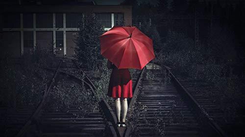 WZZPSD Malen Nach Zahlen Mädchen Mit Regenschirm Auf Der Eisenbahn DIY Einzigartige Moderne Geschenk-Wohnkultur-Art