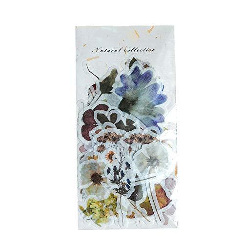 Qinlee Cartoon Sticker Pflanze Blume Muster Aufkleber DIY Scrapbooking Fotoalbum Handbuch Tagebuch Etiketten Dekoration Sticker