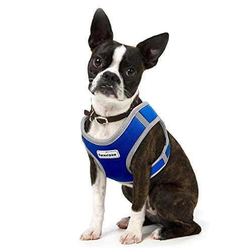 Forestpaw Reflective Dog Harnesses for Small Dogs Cat Harness,Suit for Walking Training Jack Russel,Chihuahua,Yorkie,French Bulldog,Pug,Dachshund,Pomeranian,Poodles (S, Blue)
