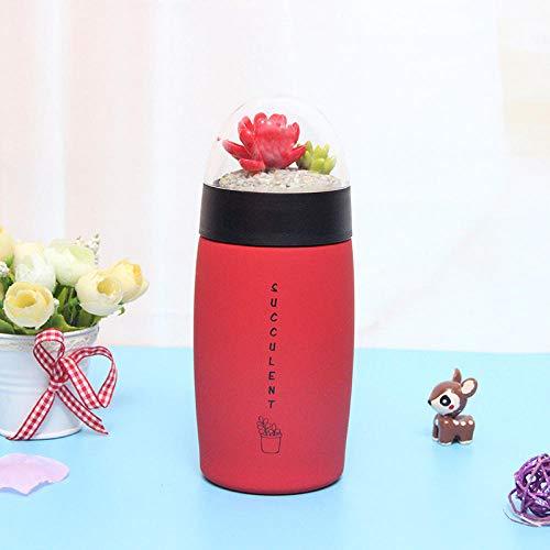 nohbi Bouteille Isotherme sans BPA,Tasse en Acier Inoxydable, Joli Micro charnu, Tasse à Paysage, Bouteille d'eau de Sport Portable, Rouge