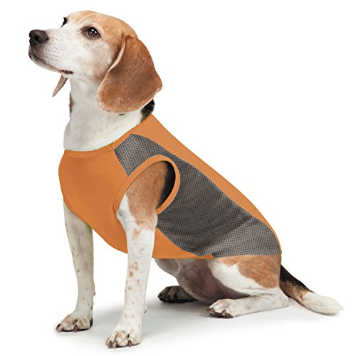 Insect Shield Insect Repellant Breathable Mesh Tank for Protecting Dogs from Fleas, Ticks, Mosquitoes & More