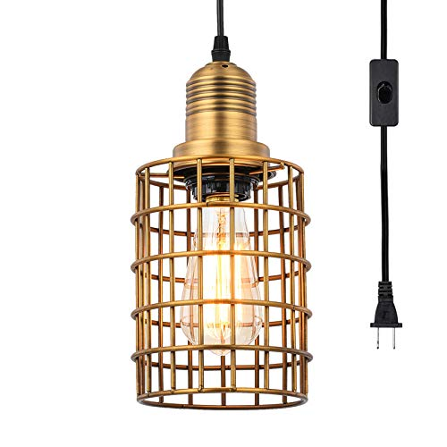 Topotdor Metal Cage Pendant Lighting with Plug in...