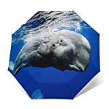 Paraguas Plegable Automático Impermeable Ballena de Esperma, Paraguas De Viaje Compacto a Prueba De Viento, Folding Umbrella, Dosel Reforzado, Mango Ergonómico