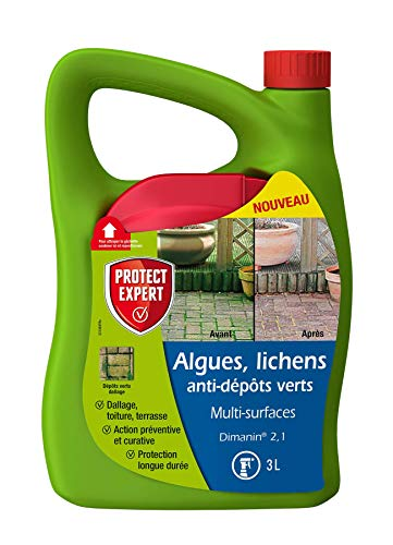 PROTECT EXPERT MOUSPAL3N Algues Lichens Anti Dépôts Vert   Multi Surfaces   3L   Désinfectant   Prêt-à-l'emploi, Triple Action