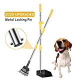 FOCUSPET Dog Pooper Scooper, Upgraded Adjustable Long Handle Metal Pet Poop Tray and Rake Set for Large & Small Dogs, Pet Waste Removal Scoop for Pets, Dirt, Gravel, Lawns, Grass