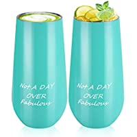 2-Pack Not A Day Over Fabulous Stemless Champagne Flute Tumbler