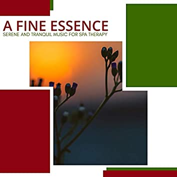 A Fine Essence - Serene And Tranquil Music For Spa Therapy