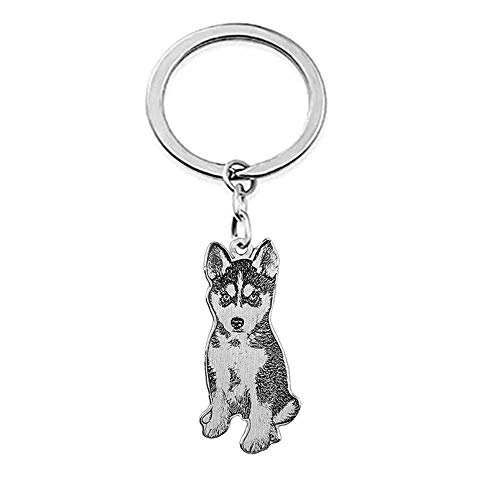 Personalized Pet Photo Keychain Custom Engraved Dog Tag Name Keychain for Women Men Best Memorial Gift
