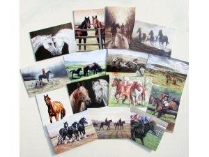 Caroline Cook Paardensport Kaarten Pack van 30 paarden