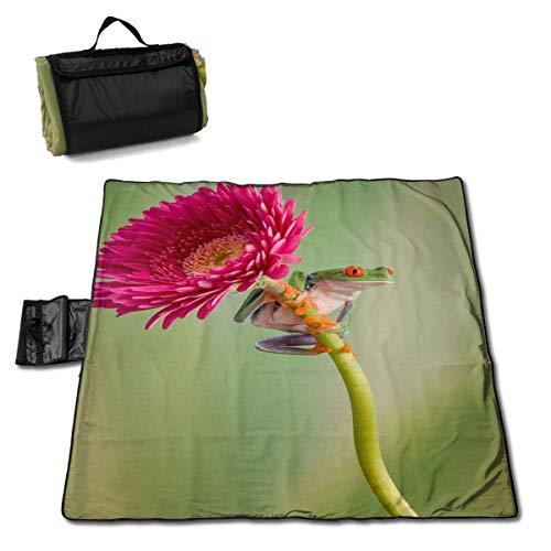 Suo Long Lookout Beach Blanket Sac fourre-Tout Compact avec Tapis de Pique-Nique avec Sangle