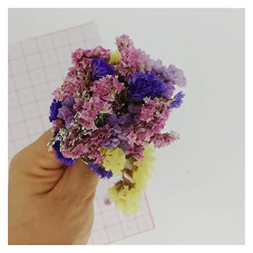 Getrocknete Blumen Mix Natural Getrocknete Blumen für Harzschmuck Zubehör/Nagelkunst Dekorationen/Waren für Handcraft 5g / Beutel Blumen getrocknet strauß