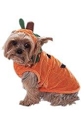 Pumpkin Pet Costume