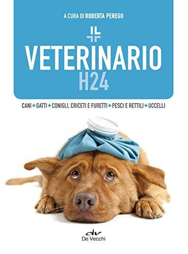 Il veterinario h24