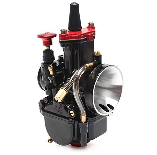 WPLHH 21 24 26 28 30 32 34 mm / Ajuste para – MAIKUNI PWK/Carburador Universal 2T 4T Motor Motocicleta Scooter UTV ATV Dirt Bike Hardware (Color: Mikuni 24)