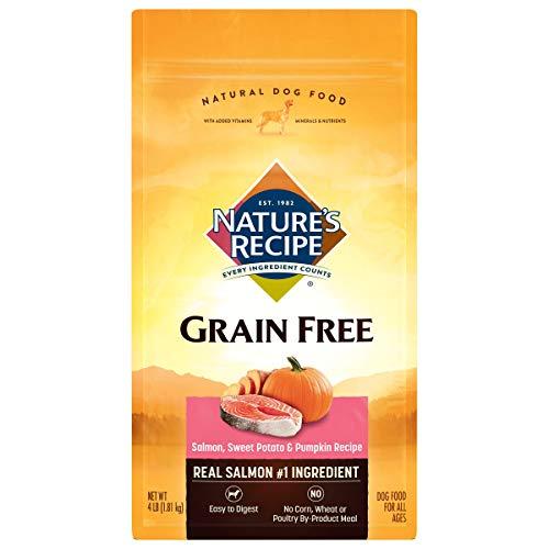 Nature's Recipe Grain Free Dry Dog Food, Salmon, Sweet Potato & Pumpkin Recipe, 4 Pounds, Easy to Digest