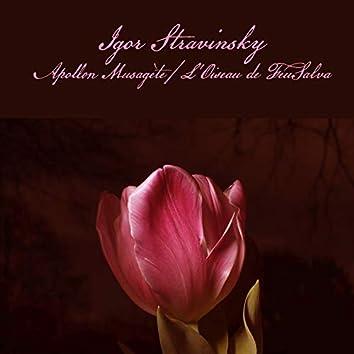 Igor Stravinsky: Apollon Musagète / L'Oiseau de Feu