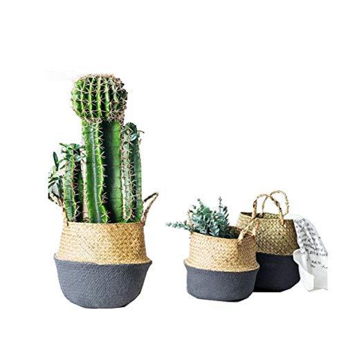 """Natural cesta de junco marino tejido de barriga, goodchanceuk 3pcs/set lavandería cesta soporte maceta Home Garden 3 tamaños 7.09 """"x 8.07""""/""""x 9.25"""" caña/10.24 """"x 12.6"""" Gris oscuro botón"""