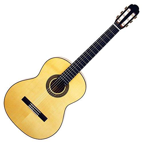 ARIA アリア クラシックギター ソフトケース付 A-50F