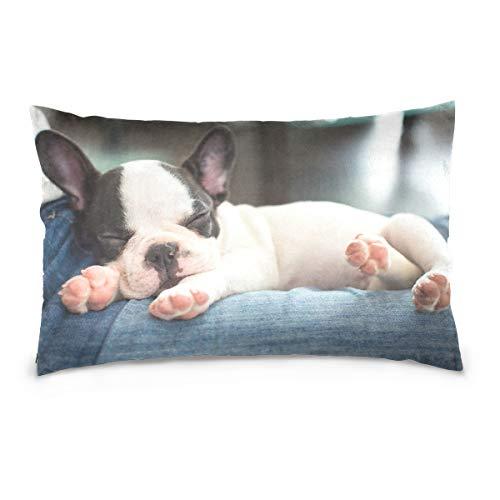 Cotton Queen Pillowcase French Bulldog Animal SleepingCotton Pillow Case Queen Size Soft and Cozy Bedding Zipper Closure Pillow Cover-20x30 Inch