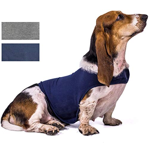 Dog Anxiety Jacket, 2Pack Breathable Stress Relief Calming Coat Dog Compression Vest Calming Wrap Dog Jacket Clothing Gray and Blue S