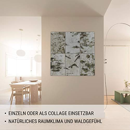 MOYA Wald Wanddeko aus Birkenrinde auf Holz - Moderne Wandverkleidung Birke Natur in Einer 3D Relief Optik – Wandpaneele Birke skandinavisch handgefertigt - Wandbild Natur Holzbild mit Rahmen,26x39cm - 2