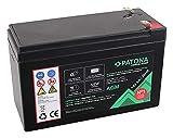 PATONA Premium AGM 12V 9Ah Batterie au Plomb VRLA - 1800 Cycles sans Entretien…