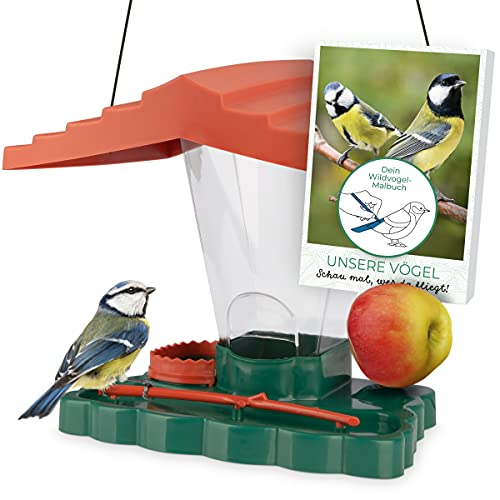 WILDLIFE FRIEND I Pajarera Piepmatz – Oasis para pájaros con Libro de Aprendizaje [Libro electrónico], Soporte para Bolas de pájaro y Bebedero para Aves Silvestres
