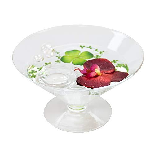 Ronde glazen schaal kegel groot hoogte 12 cm ø 22 cm. Vlakke kegelvormige glazen schaal op voet met decoratie orchidee rood decoratieve schaal van Glaskönig