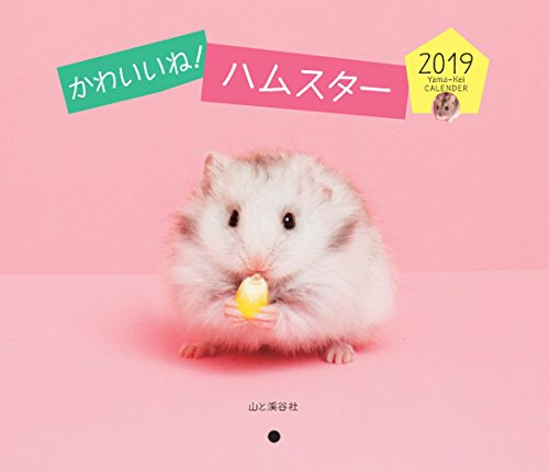 カレンダー2019 ハムスター (ヤマケイカレンダー2019)