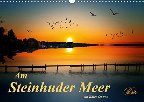Am Steinhuder Meer (Wandkalender 2021 DIN A3 quer)