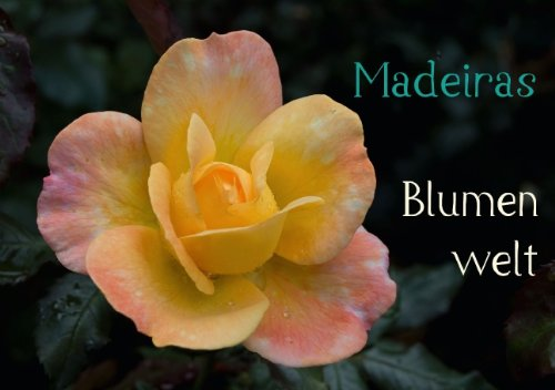 Madeiras Blumenwelt (Tischaufsteller DIN A5 quer): Wunderschöne Blüten Madeiras im Herbst (Tischaufsteller, 14 Seiten) (CALVENDO Orte) [Jul 05, 2013] Wöhlke, Jürgen
