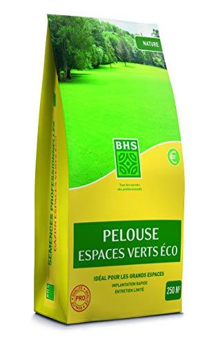BHS GEVE10   10kg   400 m²   Gazon Pelouse Espaces Verts Eco   Adaptée aux Besoins des Grandes Surfaces   Entretien limité pérennité   Bonne résistance aux piétinements   Implantation Rapide, Homogène