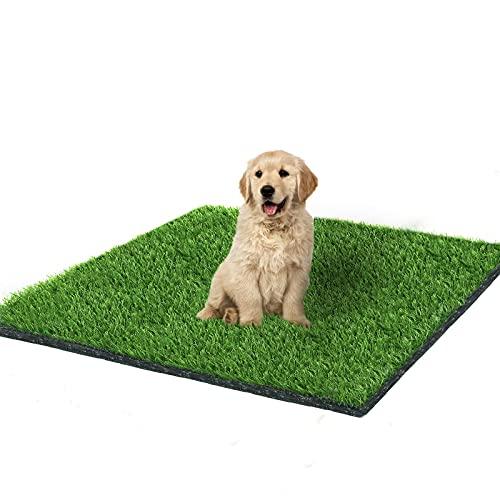 Fortune-star 100 x 80 cm Kunstrasen-Matte und Gras-Fußmatte, für drinnen und draußen, mit Drainagelöchern, für Hunde, Töpfchen, Training, Terrasse, Rasen, Dekoration