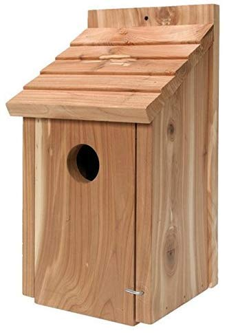 Gardirect Wild Bird Classic Nesting Box Bird House for Blue Tit Sparrow Cedar