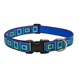 Lupine 1 Inch Sea Glass Adjustable Dog Collar for Medium and Large Dogs