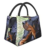 Bolsa de almuerzo aislada portátil,Rottweiler perro mascota animal reloj ne,Caja de asas reutilizable para contenedores más frescos para ir de excursión, viajes de picnic