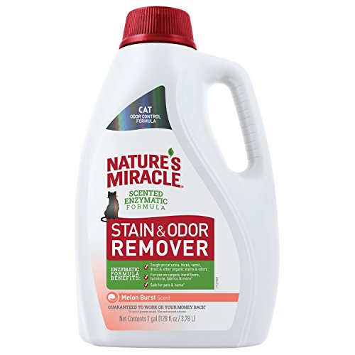 Nature's Miracle P-98154 Cat Stain and Odor Remover, Melon Burst Scent, Enzymatic Formula for Urine Stains, Feces Stains, Vomit Stains and Drool Stains, Odor Control, 128 fl oz
