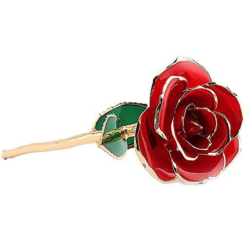 nykkola nykkola Love Forever langer Stiel 24K Gold Folie getaucht Rot Rose Blume, beste Geschenk für Valentinstag, Muttertag, Geburtstag, Jahrestag