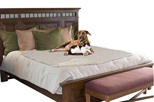 Pawsse Hundedecke Wasserdicht, Wasch Hunde Plüsch und rutschfeste Wasserdicht Mit Super Soft Sherpa Hundematte Haustier Decke für Hund Welpen Katze Innen Draussen Couch Sofa 203 x 152 cm