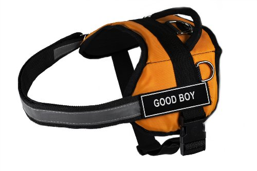 Dean & Tyler DT Works Fun Harnais Good Boy pour Animal Domestique Harnais, Medium, Compatible avec Tour de Taille 71,1 cm à 96,5 cm, Orange/Noir