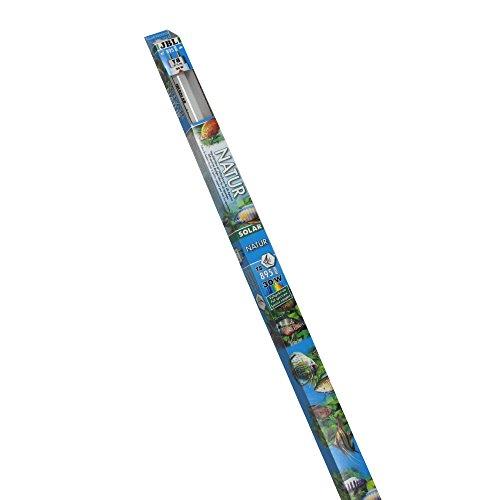JBL 61633 Solar-Leuchtstoffröhre, Tageslichtröhre für Süßwasseraquarien, 30 W Solar Natur T8