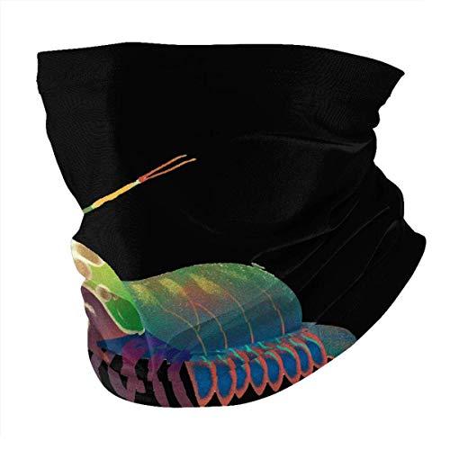 Rainbow Lobster - Bufanda para hombre y mujer