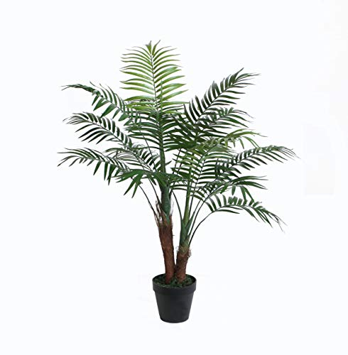 Chamaedorea seifrizii Zimmerpalme 90-110cm - Topf /Ø 13cm verschiedene Gr/ö/ßen Bambuspalme