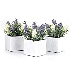 Nattol Artificial Faux Lavender and White Flowers in 2.9 Inch White Rustic Style Contemporary Design Square Cement Pot, White and Purple, Set of 3