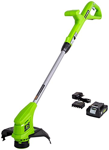 Why Should You Buy Greenworks 10-Inch 24V Cordless String Trimmer, 2.0 AH Battery Included ST24B211
