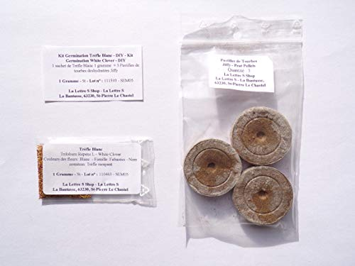 Kit Germination Trèfle Blanc - DIY Trèfle + pastilles Jiffy - Kit Germination White Clover - DIY