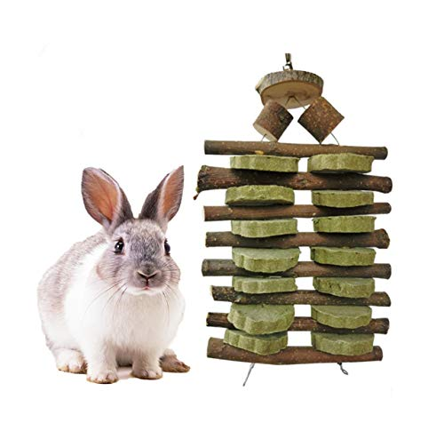 Dream night Bunny Chew Toys for Teeth, Natural Organic Apple Chewing Sticks with Grass Balls for Rabbits, Chinchillas, Guinea Pigs, Hamsters, Parrots Improve Dental Health, Double Head Suspension