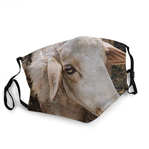 Retrato adorable oveja marrón pastando animales de granja silvestre máscaras faciales para adultos lavable al polvo bandanas reutilizables actividades interiores y exteriores