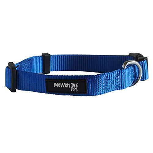 Hundehalsband, kaufen EIN Halsband. Feed einem Hund. Die Pawsitive CO strapazierfähiges Nylon Welpe und Hundehalsband mit verchromtem D Ring, Large, blau